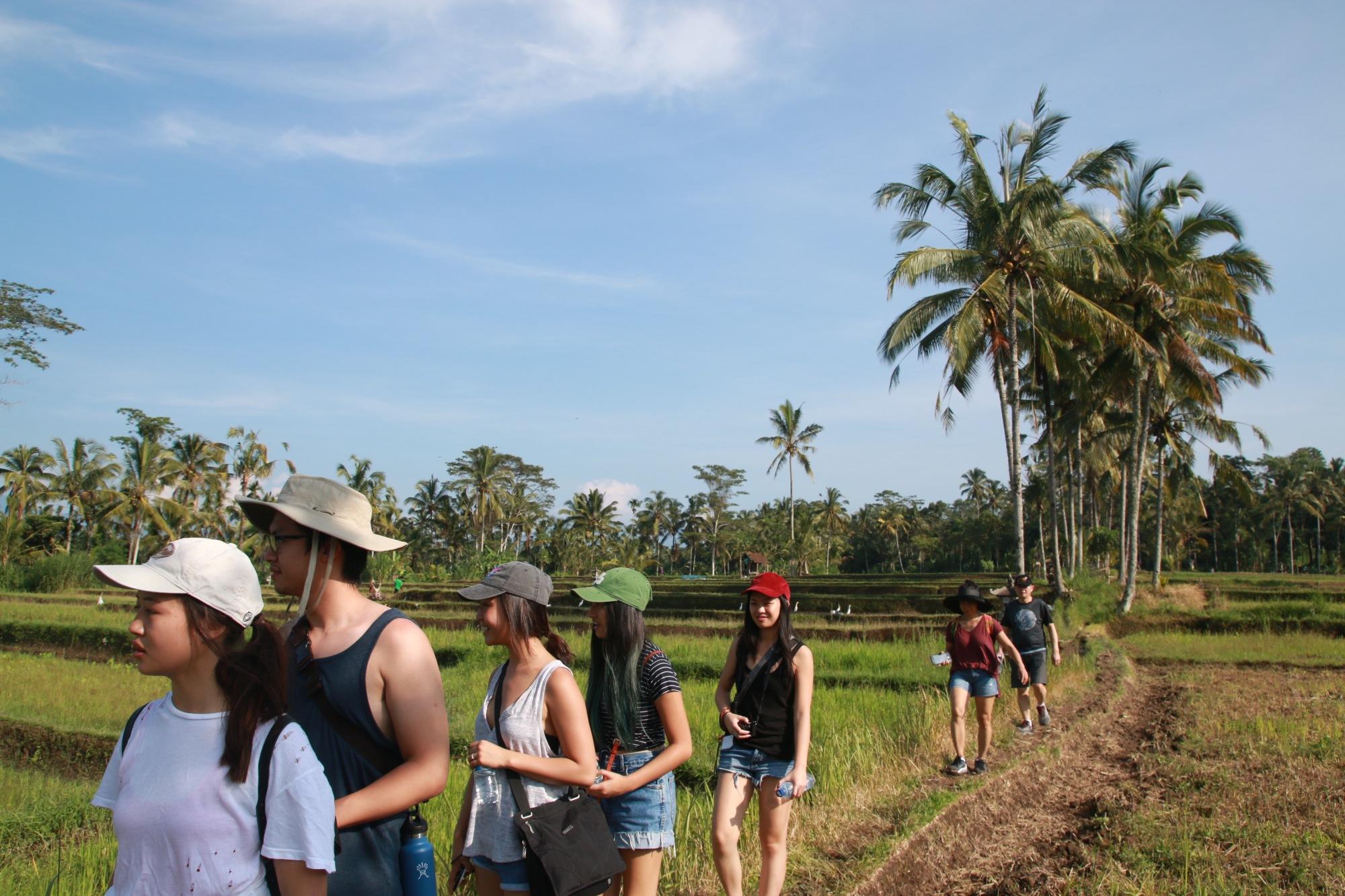 visit-bali-village-tours-delodsema_6561